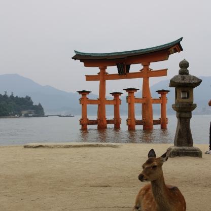 Torii a Miyajima