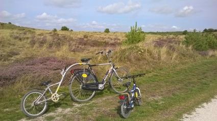 Biciclette da passeggio a noleggo sull' isola di Vlieland