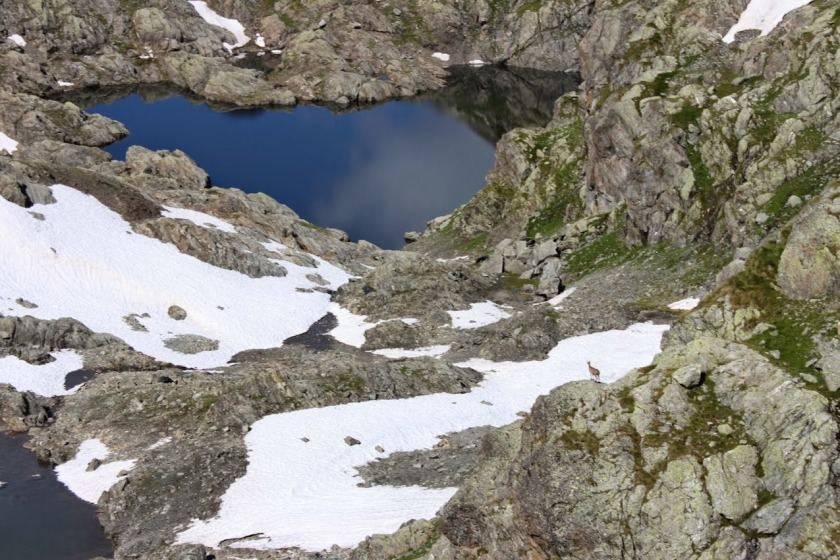 Lago Gelt