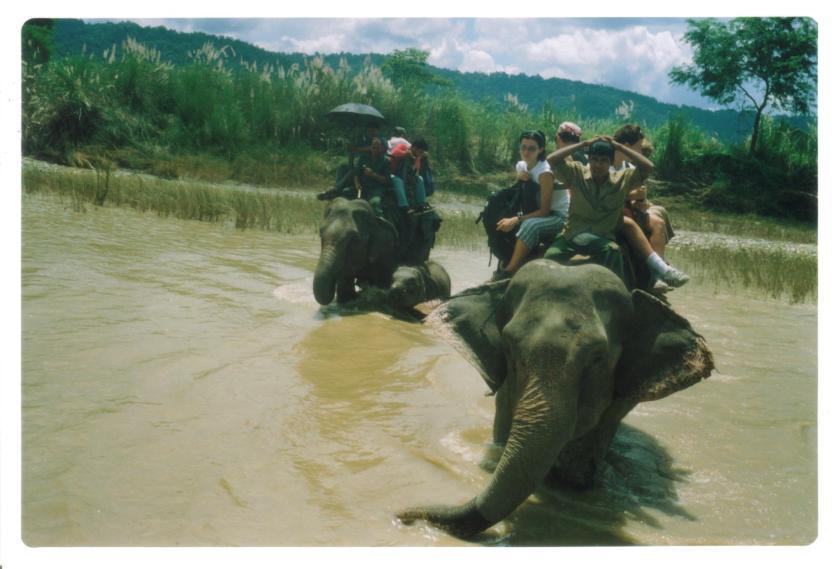 Trekking con elefanti al Chitwan NP