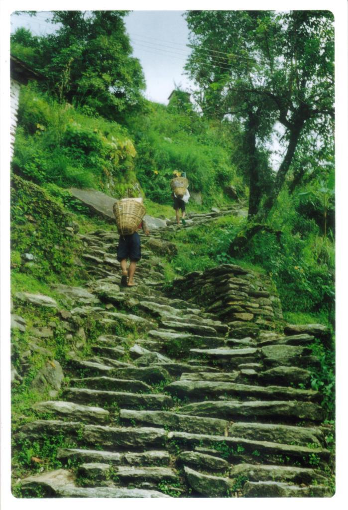 Trekking dell' Annapurna